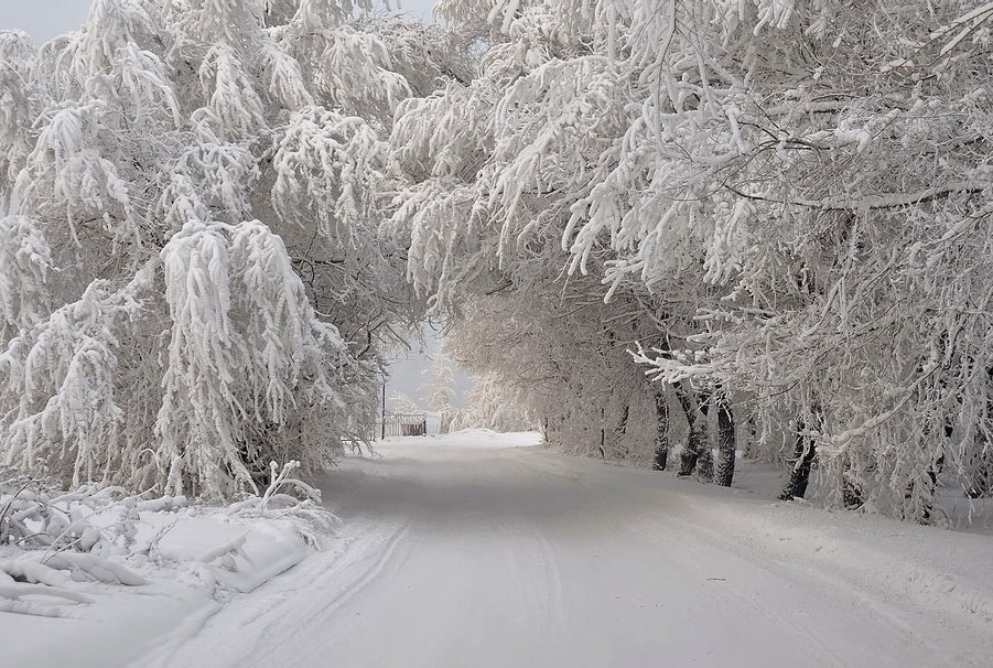 451894__white-path_p
