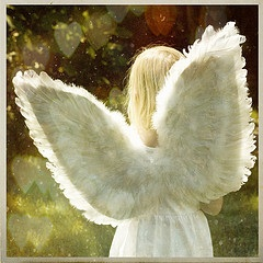angels-wings-K.Hurley