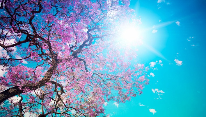 Happiness-Spring-Day-708