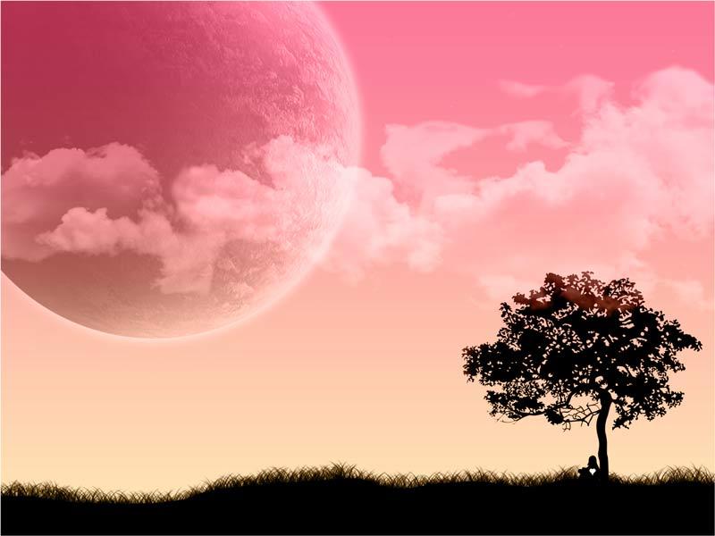 dream-(4)