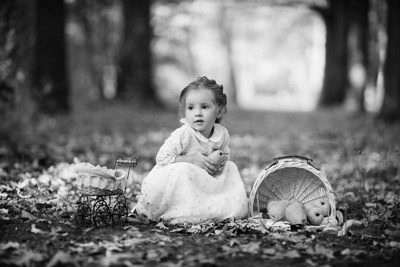 gray_cute_seller_forest_apples_photography_girl_hd-wallpaper-1870702