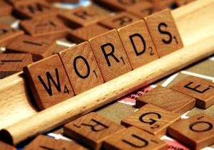 wordpower-300x211